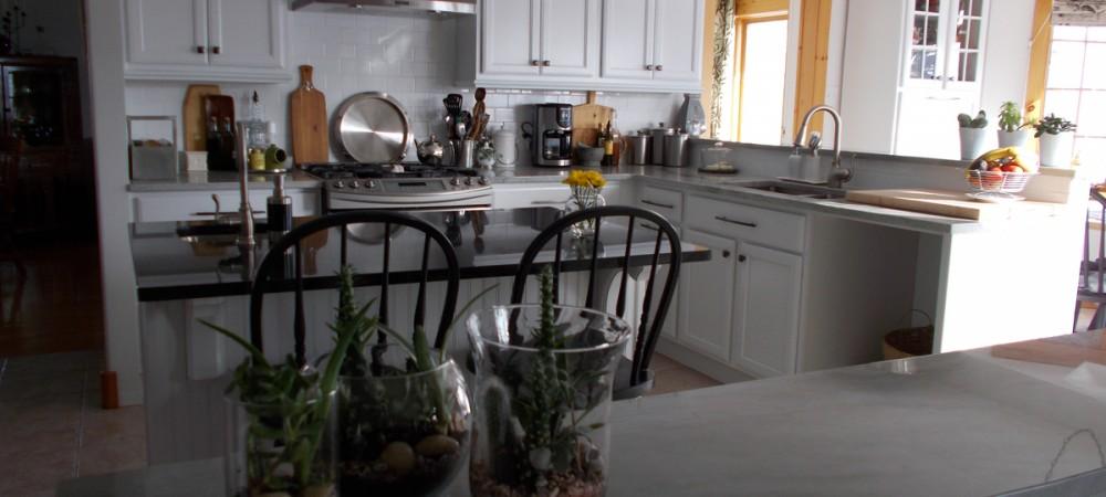 Kitchen Reno 2013 010A